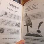 Pottermore 1 150x150 - Novas edições dos livros virão com conteúdos inéditos do Pottermore!