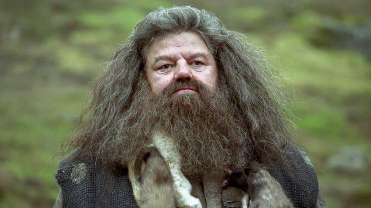 Hagrid_Prisioneiro_de_Azkaban