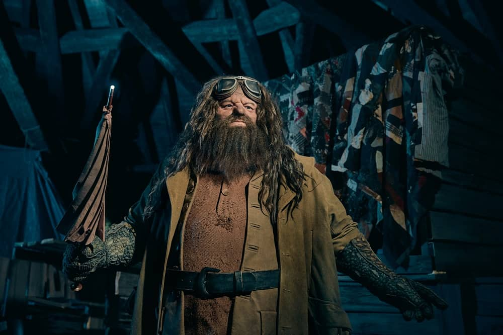 Hagrid_guia_os_visitantes_na_montanha-russa