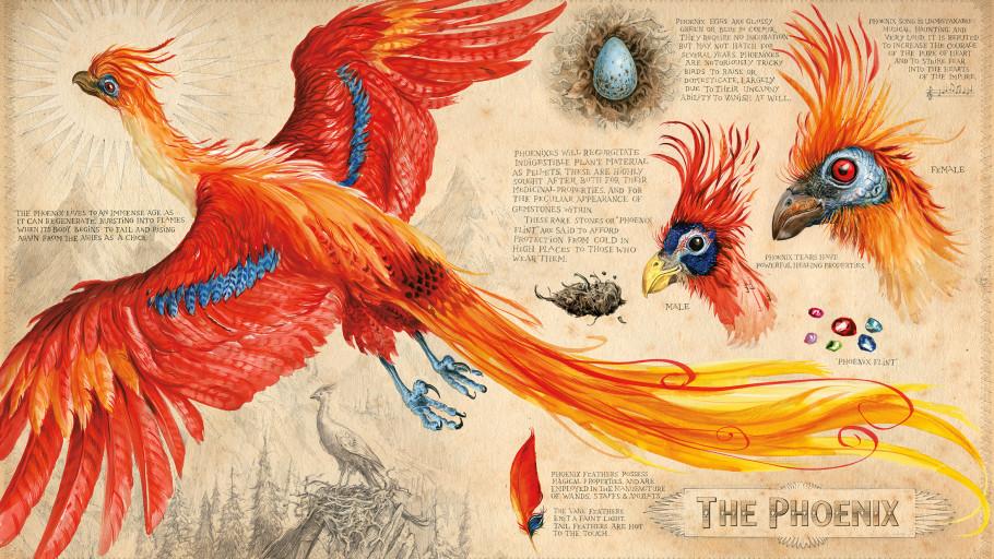 ix-ilustrada