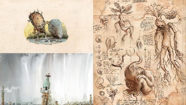 mandragora-ilustrada
