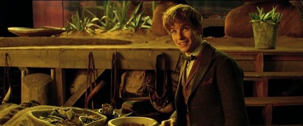 O dia em que o Pottermore entrou na maleta mágica de Newt Scamander