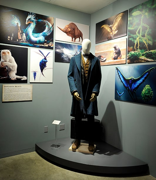 Figurino Newt Scamander