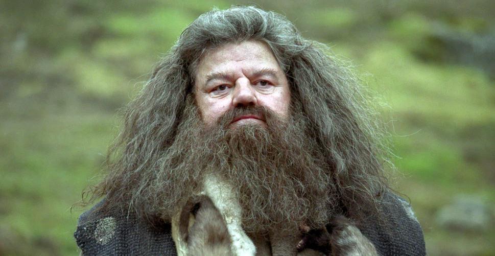 """Potterish :: Harry Potter, o Ickabog, Animais Fantásticos e JK Rowling """"Espero que um mini Hagrid possa aparecer"""", diz Eddie Redmayne sobre Animais Fantásticos"""