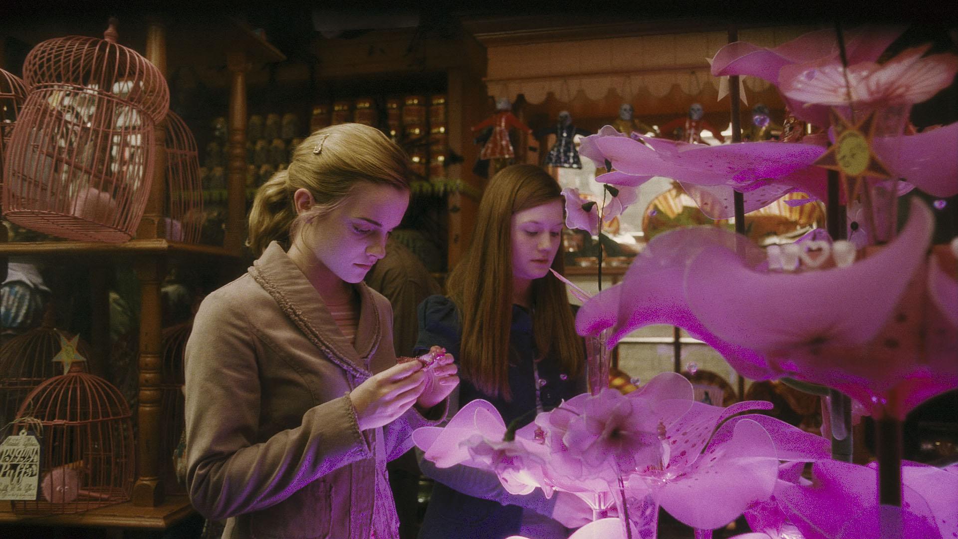 Hermione Granger e Gina Weasley admiram poções do amor na loja dos gêmeos Weasley